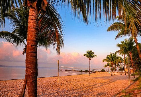 Montrose to/from West Palm Beach (PBI) FL Flight Deal from $301rt