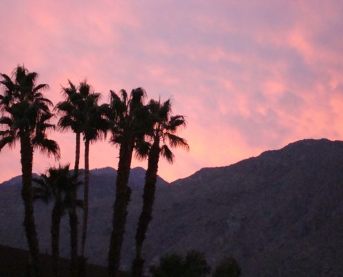 Montrose to/from Palm Springs (PSP) CA Flight Deal from $222rt