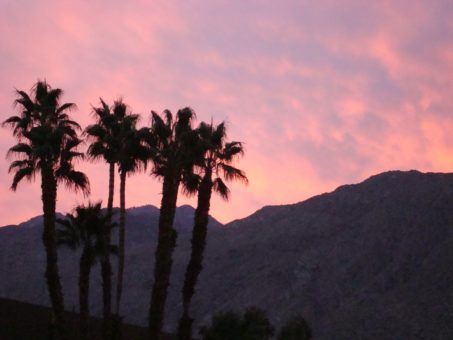 Montrose to/from Palm Springs (PSP) CA Flight Deal from $166rt
